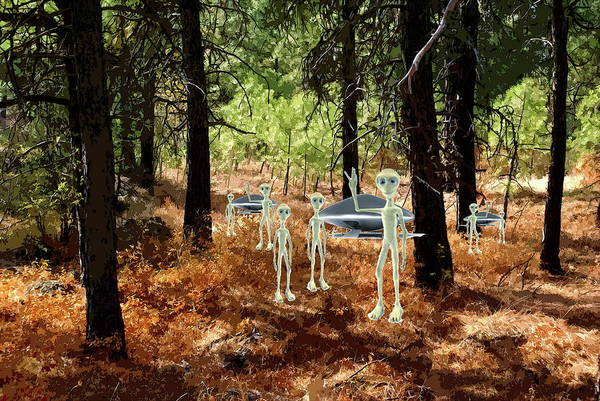 Photograph - Aliens In The Woods by Ben Upham III