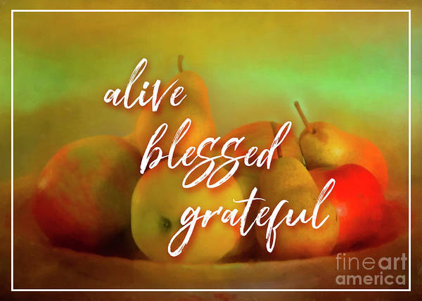 Photograph - Alive Blessed Grateful by Hal Halli