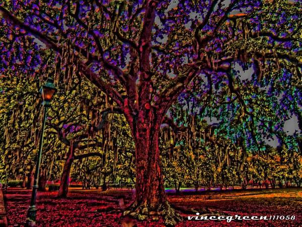 Alive Oak Art Print