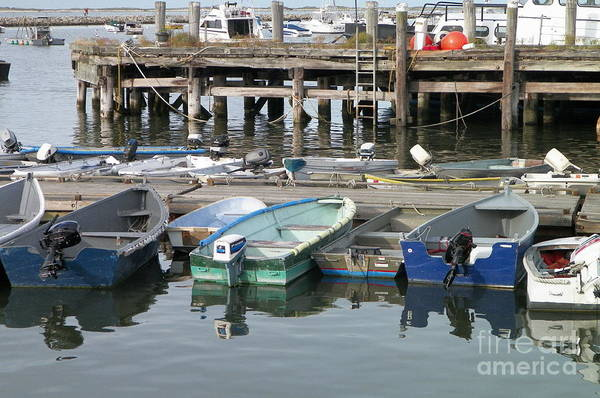 Wall Art - Photograph - All In A Row by Gina Sullivan