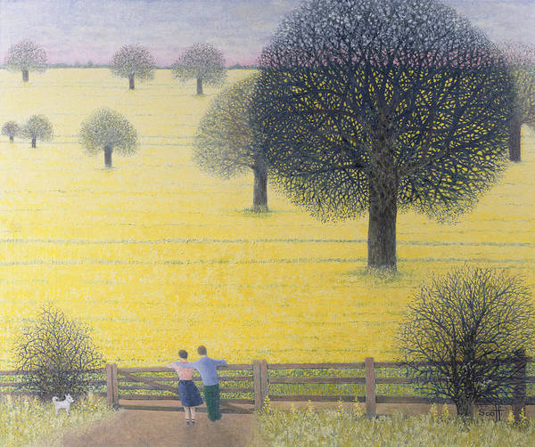 Rural Drawing - All That Yellow  by Pat Scott