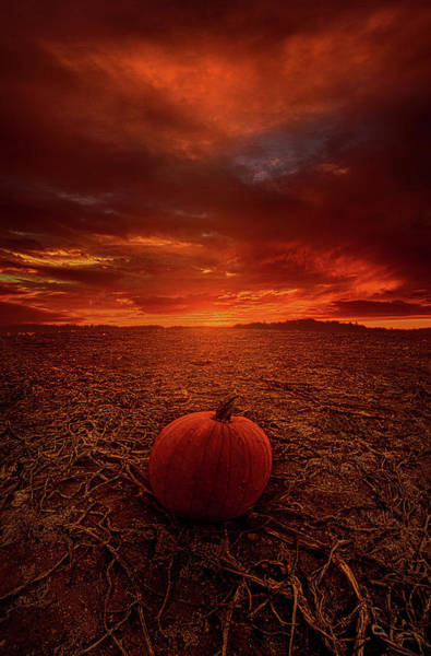 Photograph - All That's Left To Do Is Wait by Phil Koch