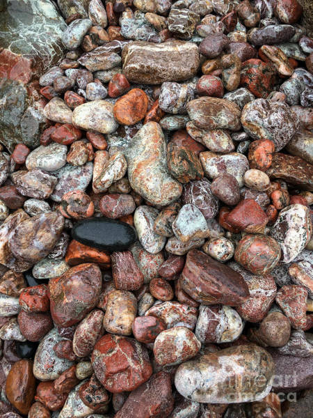 Photograph - All The Pretty Stones by Rachel Cohen