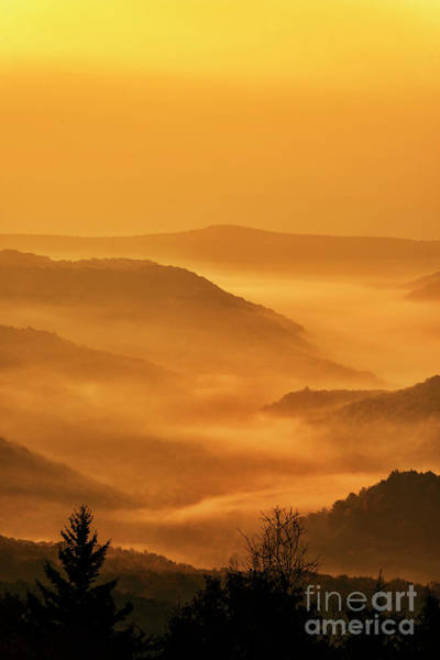 Allegheny Mountain Sunrise Vertical Art Print