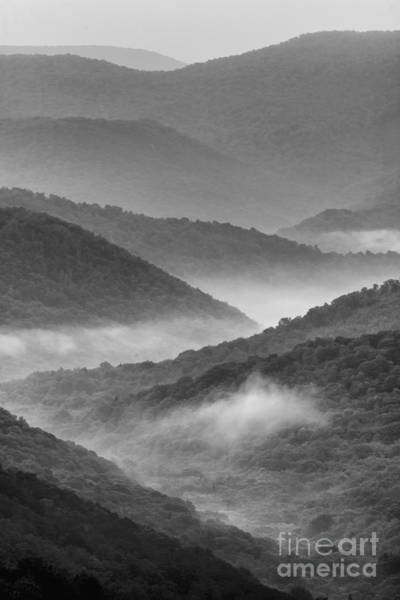 Photograph - Allegheny Mountains by Thomas R Fletcher