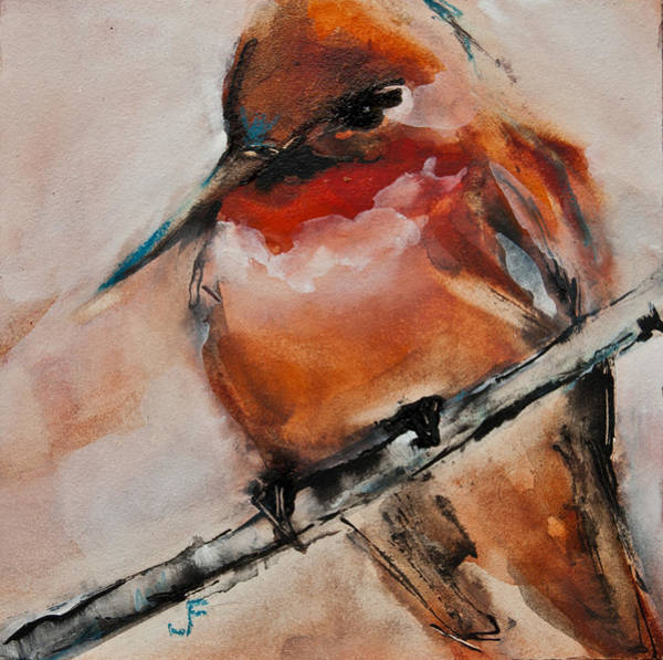 Painting - Allen's Hummingbird by Jani Freimann
