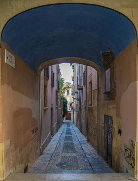 Photograph - Alley Blues by Gary Lengyel