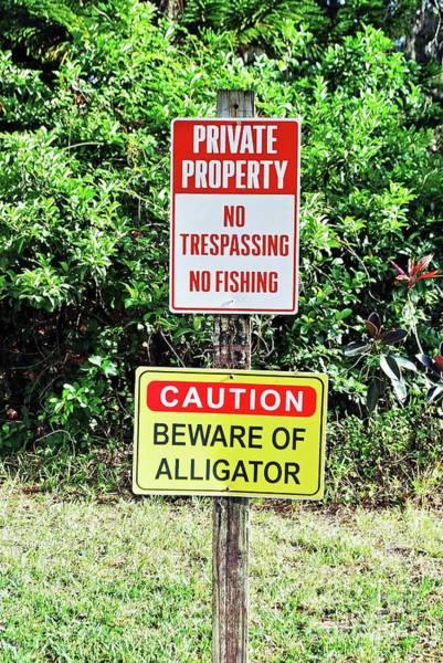 Photograph - Alligator Warning by Gary Wonning