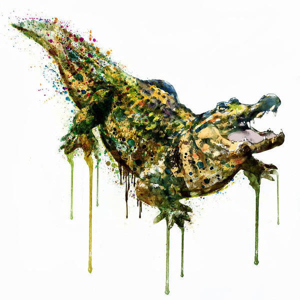 Zoology Painting - Alligator Watercolor Painting by Marian Voicu