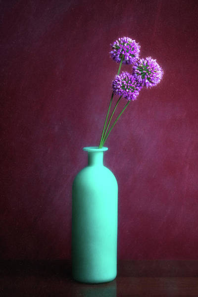 Floral Arrangement Photograph - Allium Medusa Flower by Tom Mc Nemar