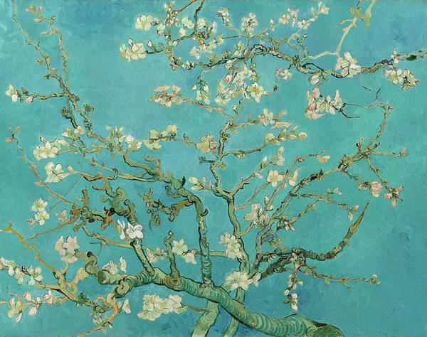 Almond Painting - Almond Blossom, 1890 by Vincent van Gogh