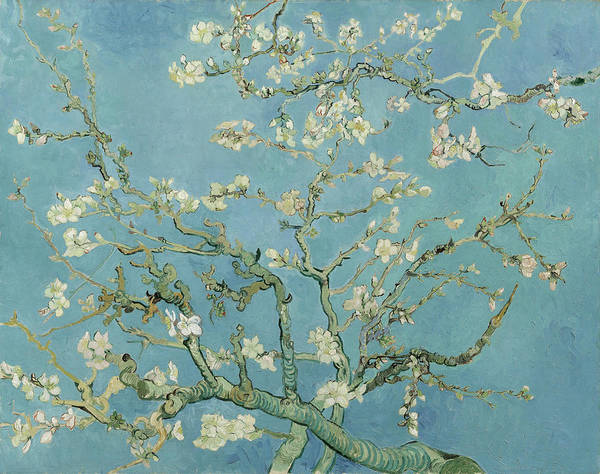 Painting - Almond Blossom by Joy of Life Art Gallery - Vincent Van Gogh