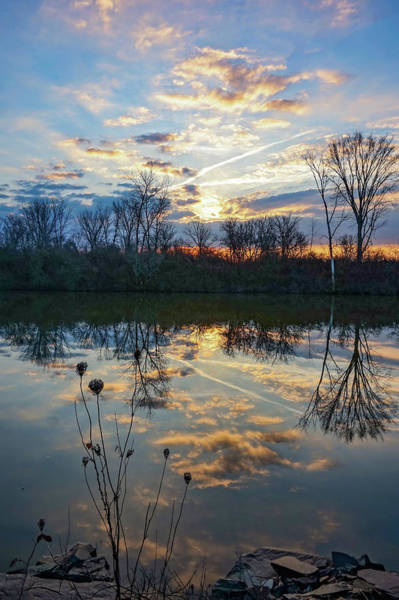 Photograph - Almost December by Kendall McKernon