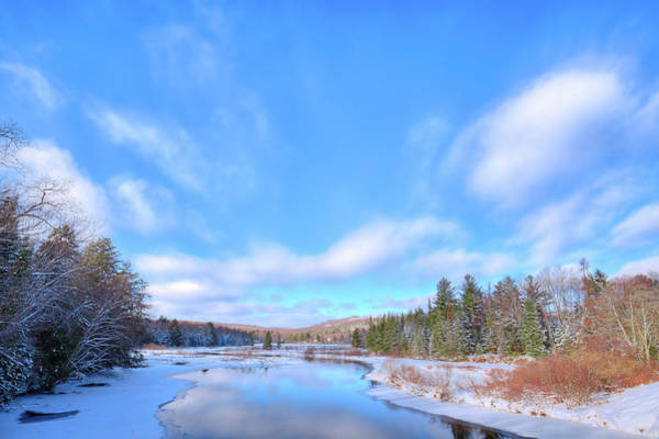 Photograph - Almost Frozen by David Patterson