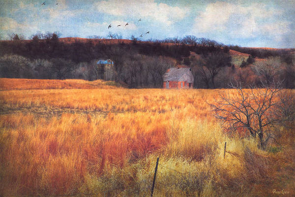Photograph - Almost Winter Kansas Countryside Silos And Barn by Anna Louise
