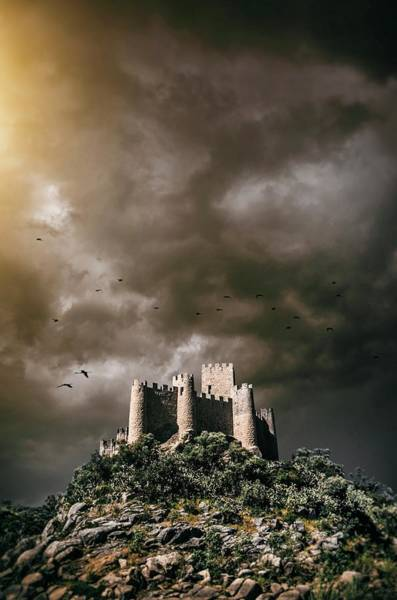Wall Art - Photograph - Almourol Castle In Portugal by Carlos Caetano