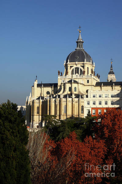 Photograph - Almudena Cathedral And Autumn Trees Madrid by James Brunker