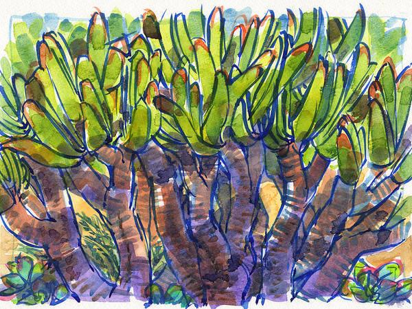Painting - Fan Aloe by Judith Kunzle