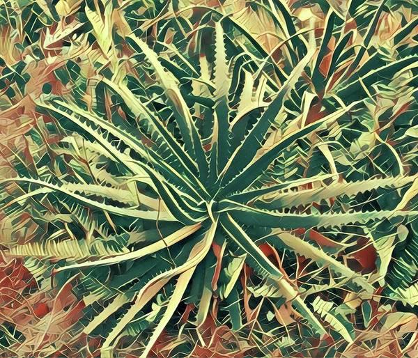 Aloha Aloe In Puna Art Print