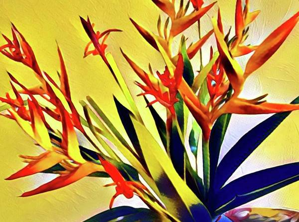 Aloha Bouquet Of The Day - Halyconia Birds In Orange Art Print