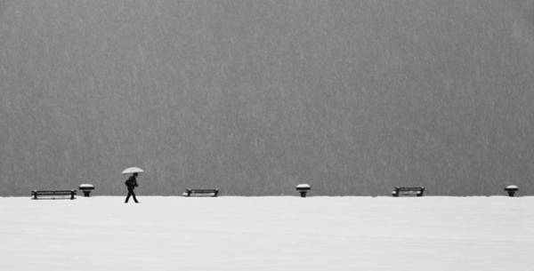 Snowstorm Wall Art - Photograph - Alone In Snowstorm by Eric Monvoisin