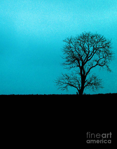 Wall Art - Photograph - Alone On A Hill by Dennis Curry