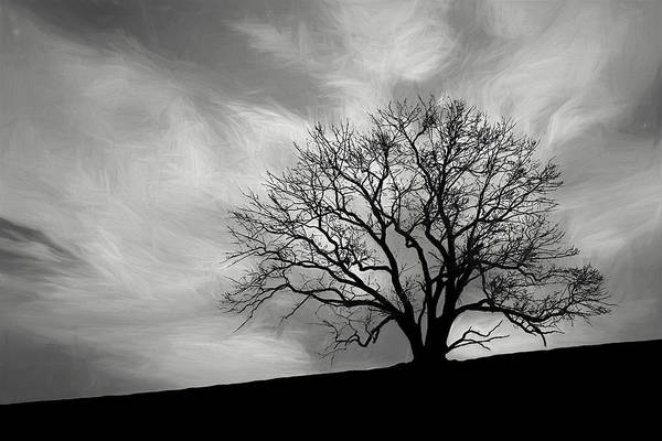Grey Skies Wall Art - Photograph - Alone On A Hill In Black And White by Tom Mc Nemar