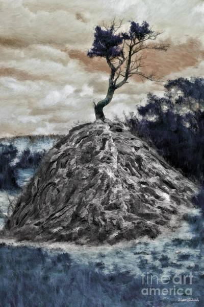Photograph - Alone On A Rock by Blake Richards