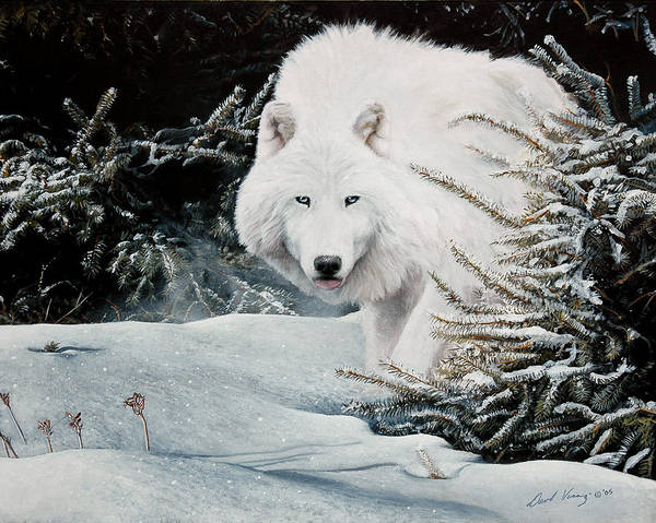 Arctic Wolf Painting - Alone On The Path by David Vincenzi