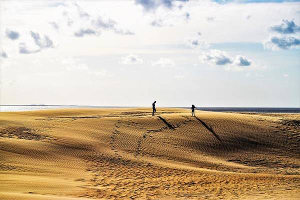 Wall Art - Photograph - Alone On The Ridge by Mary Ann Artz