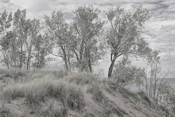 Photograph - Along Shores Of Lake Michigan by John M Bailey