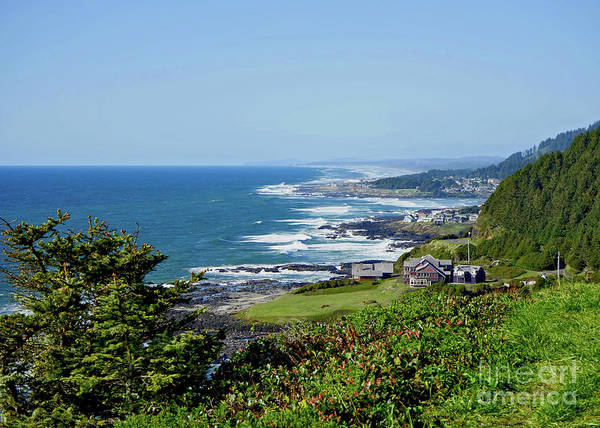 Photograph - Along The Coastline On A Perfect Day by Tanya Filichkin