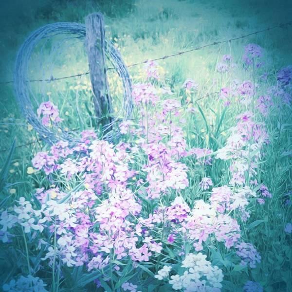 Fence Post Digital Art - Along The Fence by Jenn Teel