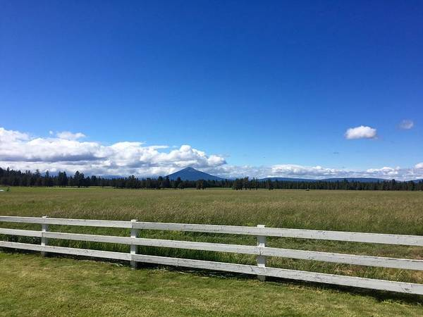 Photograph - Along The Fence Line by Brian Eberly
