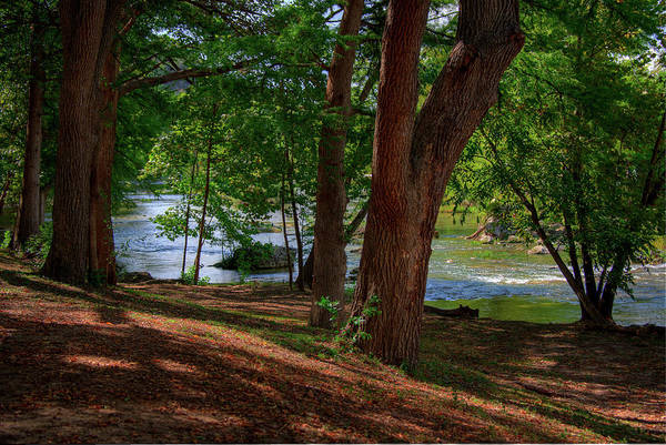 New Braunfels Photograph - Along The Guadeloupe by Kelly Wade