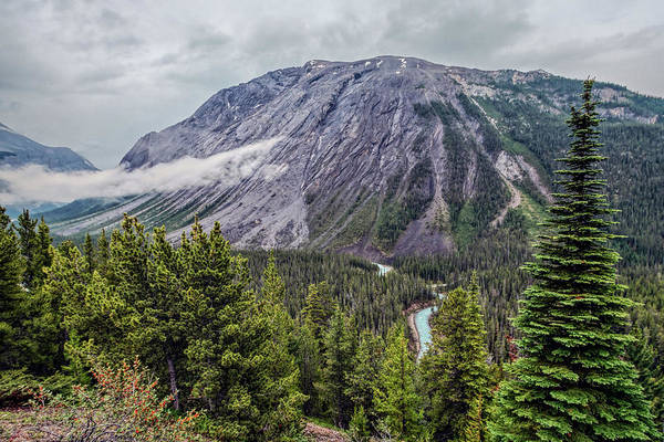 Photograph - Along The Icefields Parkway by Joan Carroll