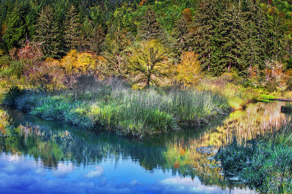 Photograph - Along The River by Debra and Dave Vanderlaan