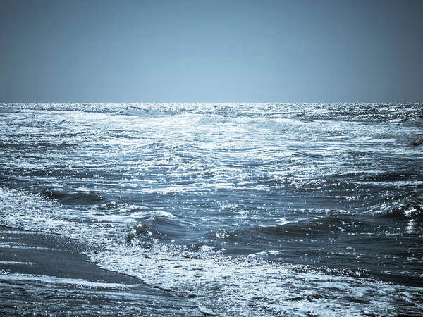 Foreshore Photograph - Along The Shore by Wim Lanclus