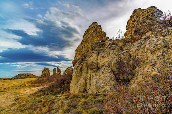 Photograph - Along The Spine by Jon Burch Photography