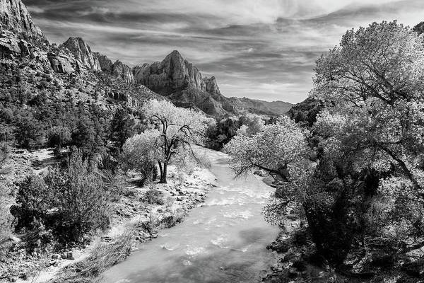 Photograph - Along The Virgin River - B/w by Michael Blanchette