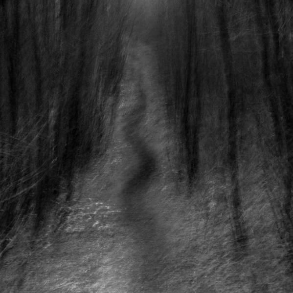 Nottingham Photograph - Along The Wave by Chris Dale