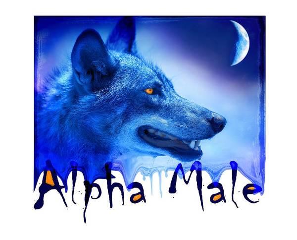 Wall Art - Photograph - Alpha Male by Mal Bray