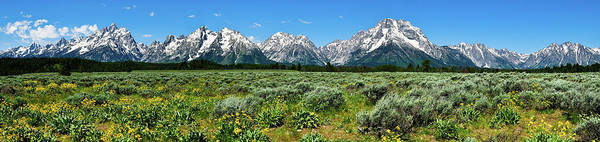 Art Print featuring the photograph Alpine Meadow Teton Panorama II by Greg Norrell