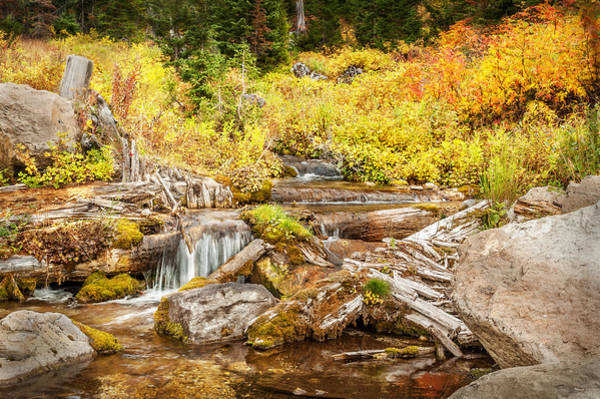 Photograph - Alpine Waterfall by Ramona Murdock