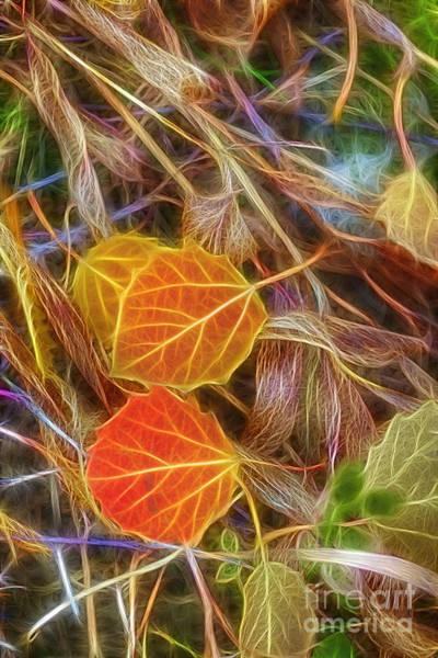 Fall Colors Digital Art - Already Fallen by Veikko Suikkanen