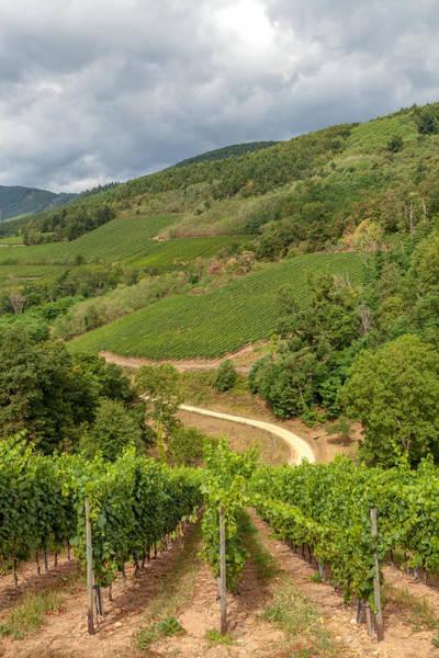 Alsace Wall Art - Photograph - Alsatian Hills by W Chris Fooshee