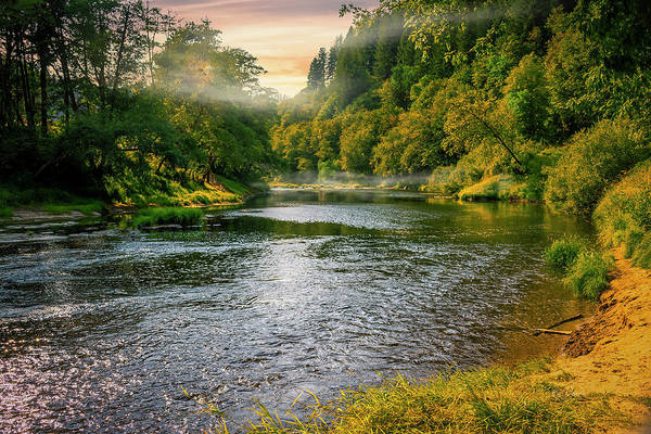 Photograph - Alsea River Late Summer by Bill Posner