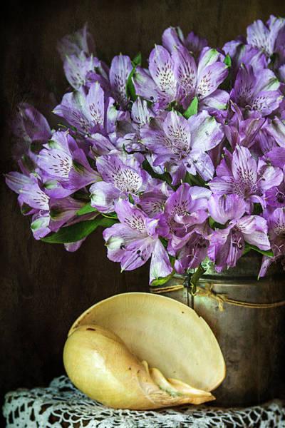 Alstroemeria Photograph - Alstroemeria With Seashell by Cindi Ressler