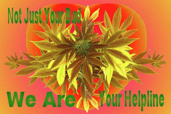 Medical Cannabis Mixed Media - Alternative Medicine by Mike Breau