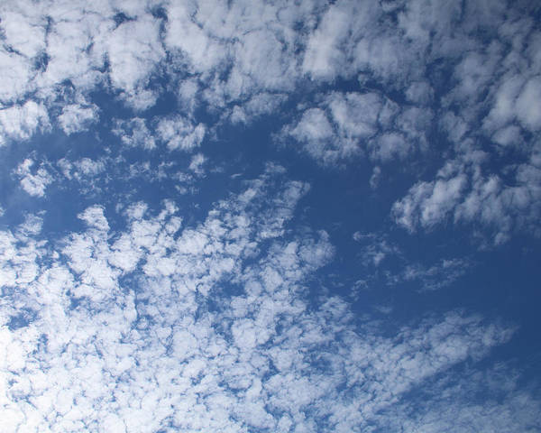 Photograph - Altocumulus Abstract 3 by William Selander
